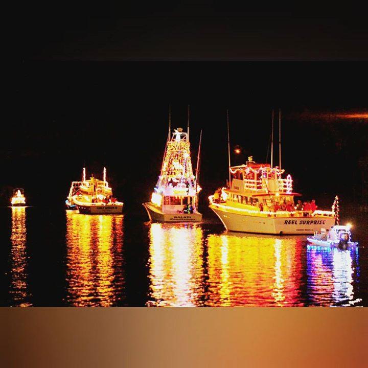Lighted Boat Parade Dinner Cruise