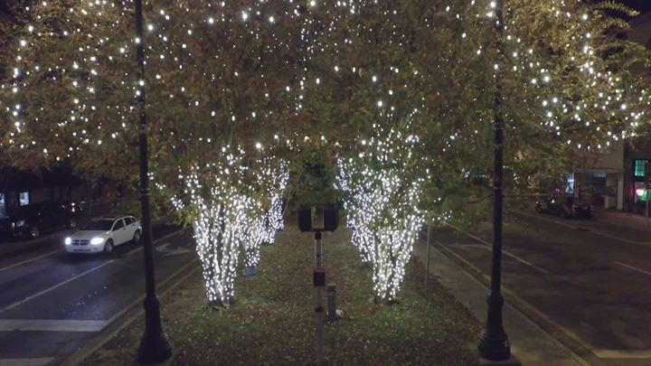 first city lights festival lighting ceremony