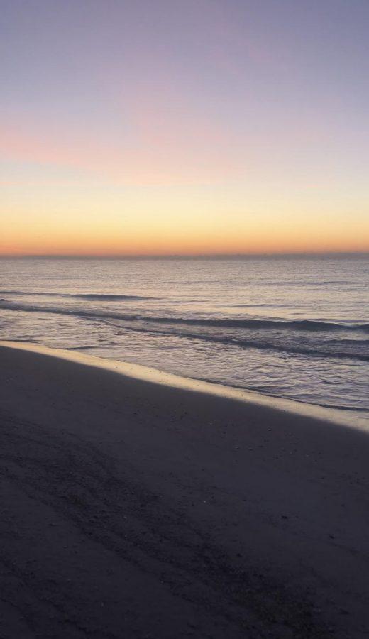 Pensacola's Best Eco-Tourism Opportunities