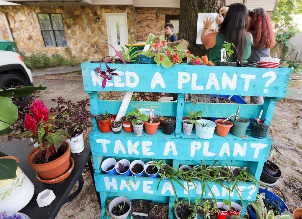 Plant libraries bring new, old hobbyists across Florida's Emerald Coast together